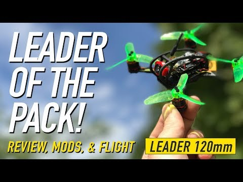 LEADER 120 – LEADER of the PACK! – Mods, Review & Flight