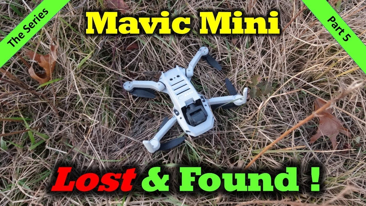 I Crashed the Mavic Mini and Found it With The DJI Fly App