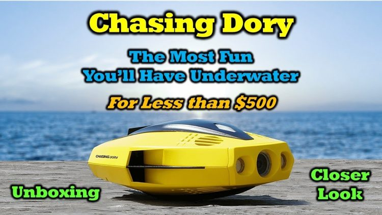 Chasing Dory – An Underwater Marvel for Under $500