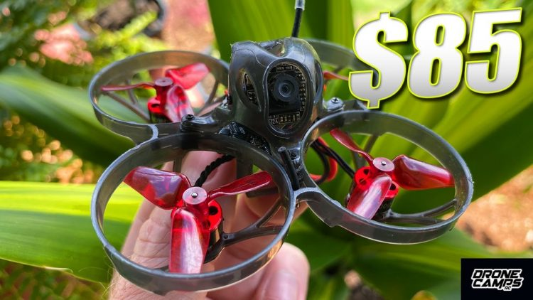 BEST BEGINNER DRONE for $80!!! – Eachine UZ65 Brushless Drone – REVIEW & FLIGHTS