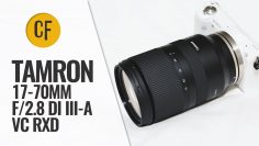 Tamron 17-70mm f/2.8 Di III-A VC RXD lens review with samples